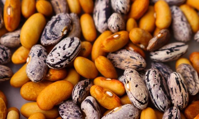 Індійські вегетаріанці хочуть купувати більше українських бобових