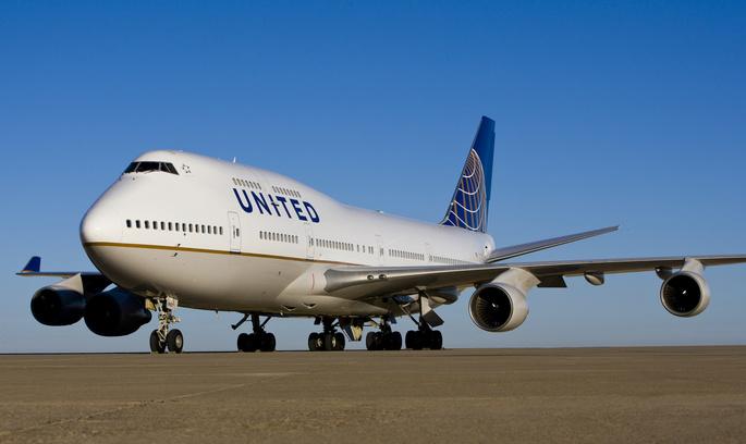 Знову скандал: на борту літака United Airlines вмер найбільший у світі кролик