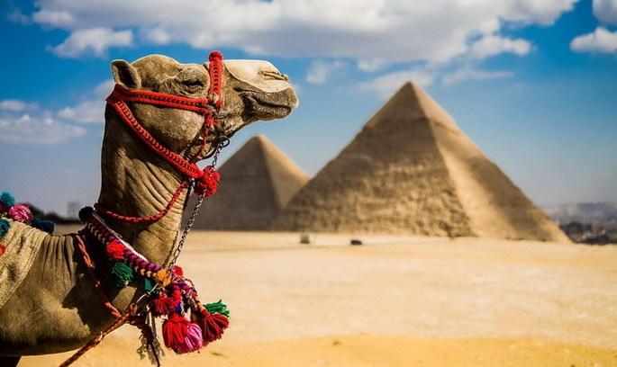 У Єгипті вводять електронні візи для туристів