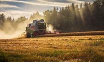 Земельний ринок: про що дискутують парламент, Кабмін та аграрії