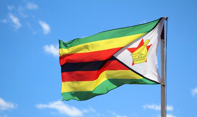 «Мої роки – моє багатство»: 93-літній президент Зімбабве балотується на новий термін