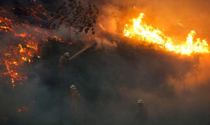 Лісові пожежі в Португалії: кількість жертв різко зросла