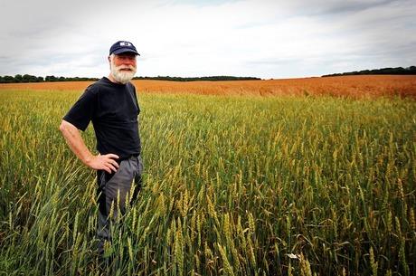 Корисний приклад: як розпоряджаються земельними ресурсами в Канаді
