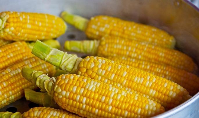 Україна активно експортує зернові культури і борошно