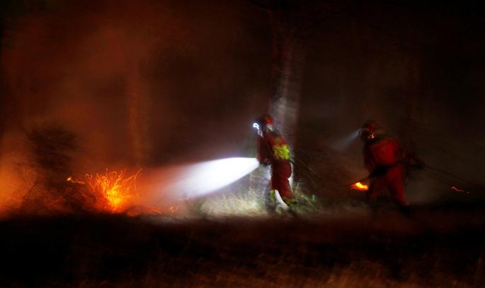 Через пожежу в Іспанії опинилися під загрозою рідкісні види тварин
