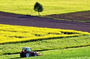 Давно назріло: Земельна реформа в Україні