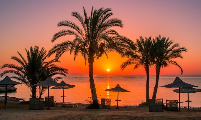 У Єгипті внаслідок ножових поранень вбито двох туристів (ФОТО 18+)