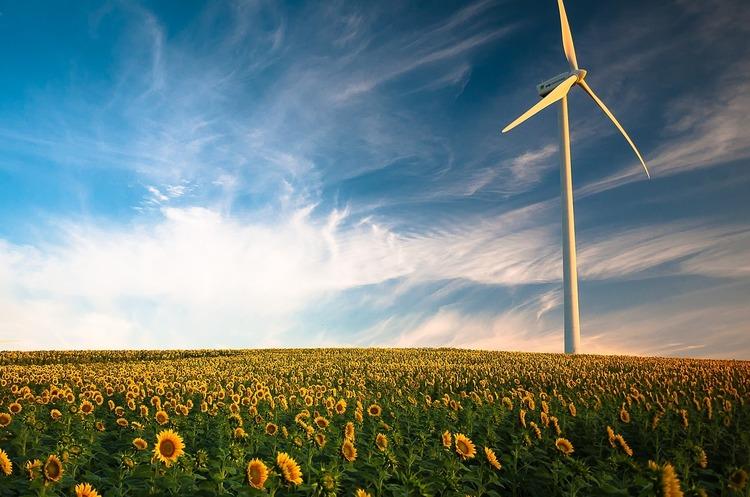 Виробництво української соняшникової олії збільшилося на 35%