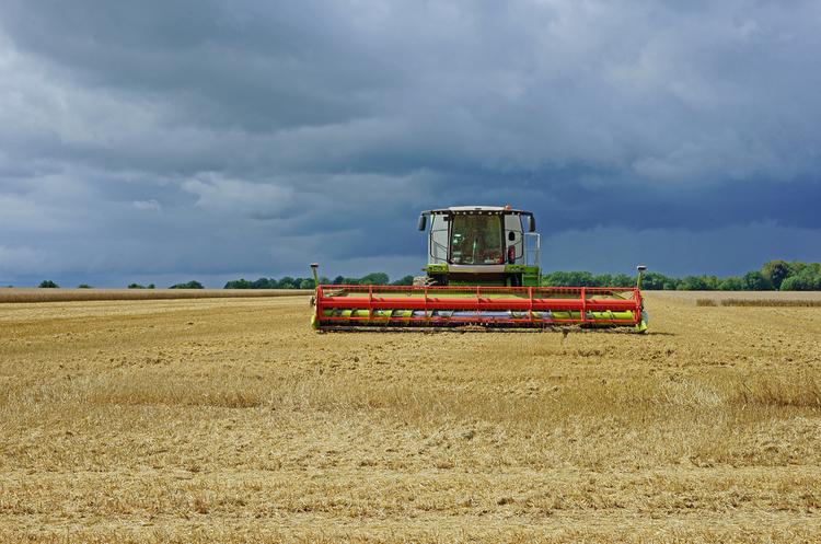 Агрохолдинг «Мрія» звинувачують у рейдерскому захопленні землі