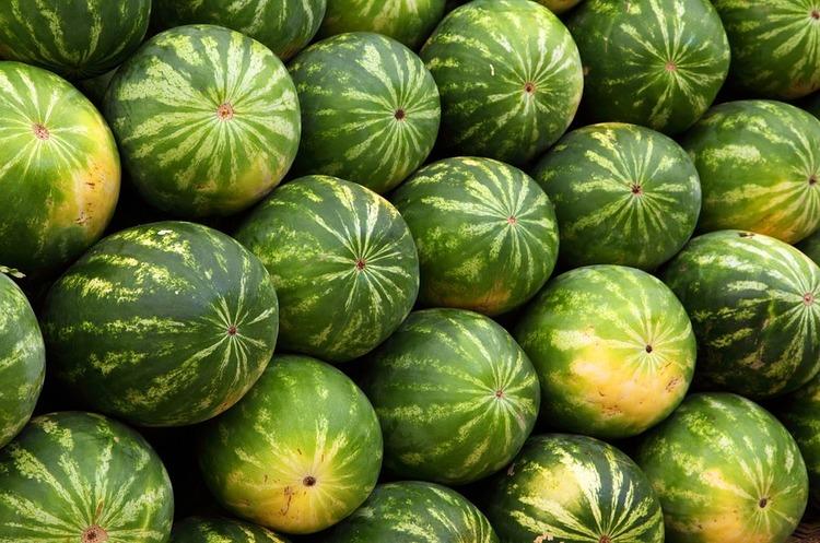 Слідом за баржею з кавунами по Дніпру почнуть доставляти овочі