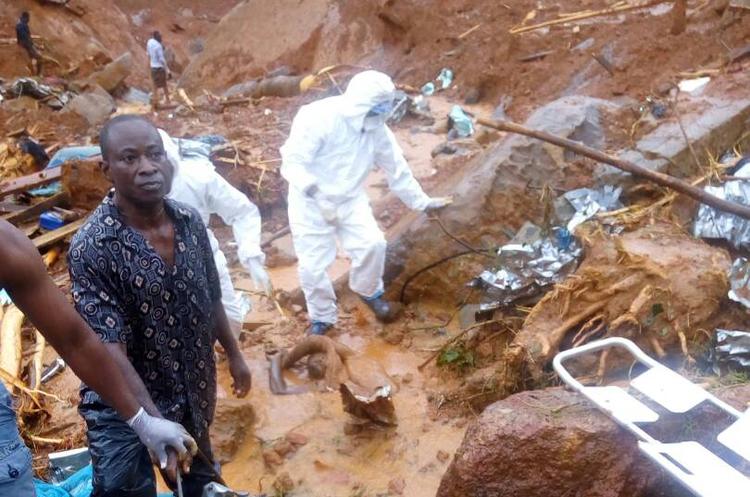 У Сьєрра-Леоне вирубка лісів призвела до масштабного зсуву грунту, сотні людей загинули