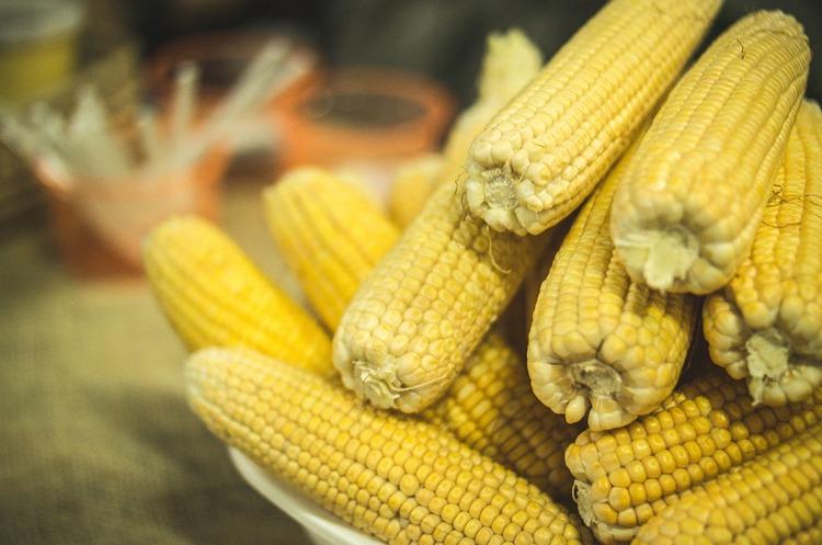 Кенія продовжила безмитну закупівлю кукурудзи в України до наступного року