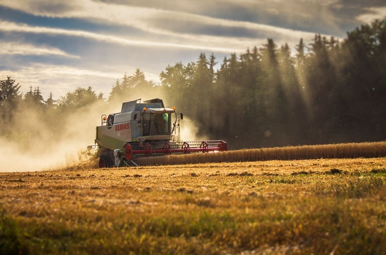 15 областей України показали найвищу врожайність за період незалежності
