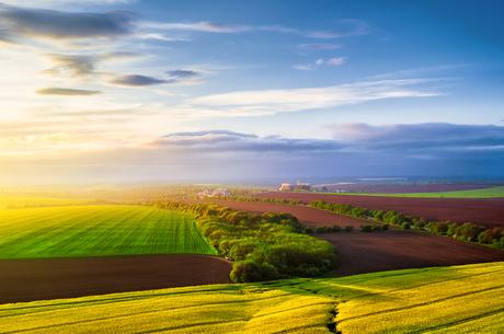 Земельна децентралізація: що можуть отримати громади