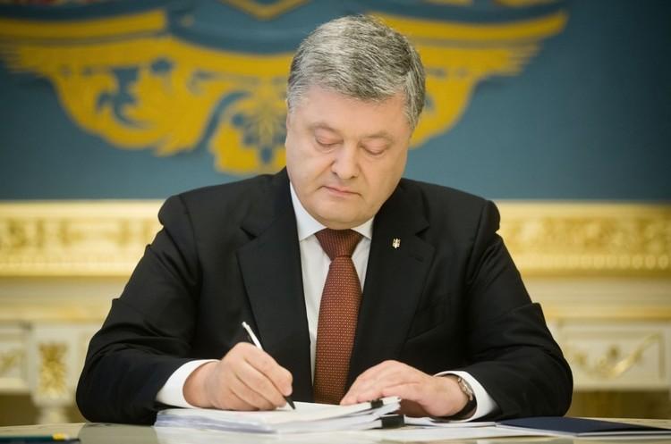Президент підписав закон про посилення відповідальності за незаконну порубку лісу