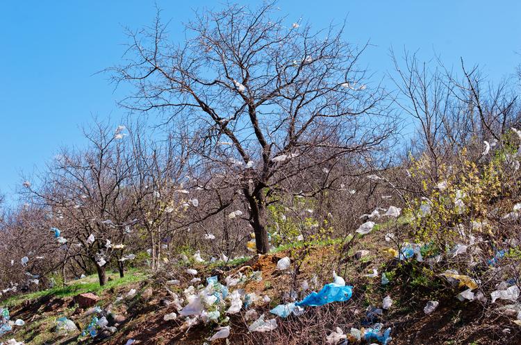 У Німеччині та Брюсселі відмовляються від використання пластикових пакетів