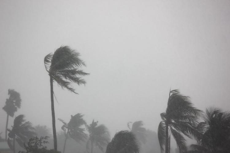 Через ураган «Ірма» загинуло вже 8 людей, кількість загиблих може зростати