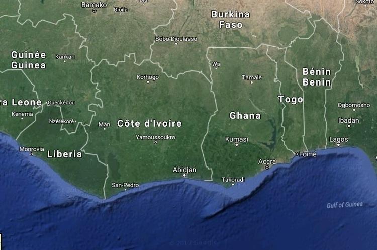 Купив шоколадку – знищив дерево: тропічні ліси вирубують через вирощування какао-бобів