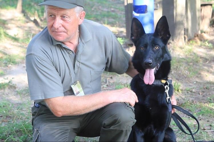 Чотирилапі сек'юріті: як працюють службові собаки на сторожі авіабезпеки
