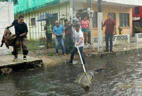 Тропічний шторм «Нейт» убив щонайменше 20 людей Коста-Ріки, Нікарагуа і Гондурасу