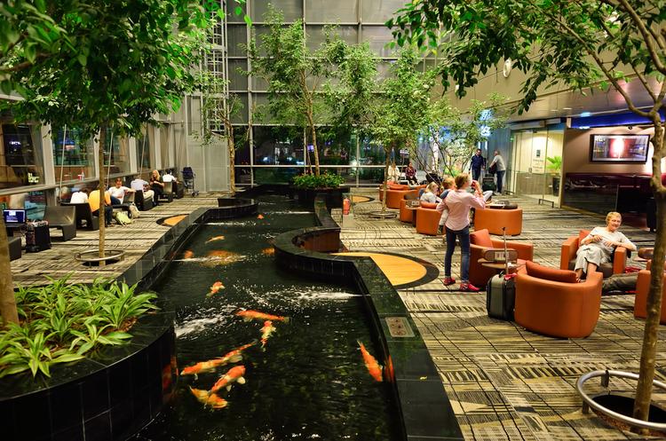 У Сінгапурі запустили пасажирський термінал без персоналу