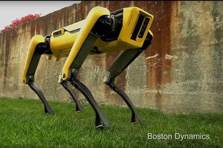 «Домашній робо-улюбленець»: Boston Dynamics представила оновлену версію робота-собаки (ВІДЕО)