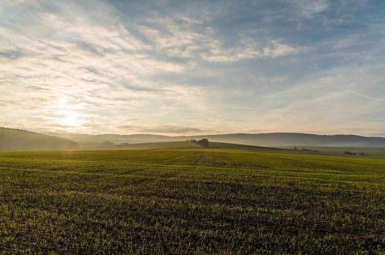 Після скасування мораторію гектар землі коштуватиме 60 000 грн – МінАПК