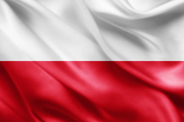 Польща планує захищатися від АЧС стіною на кордоні з Україною