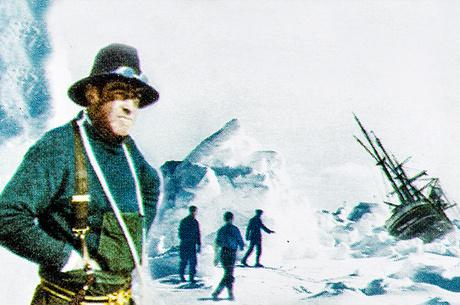 Победа или фиаско: чем интересна книга «Шеклтон. Ирландец в Антарктике»