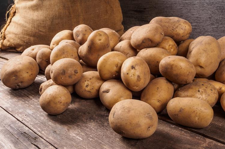 Україна збільшила експорт картоплі в 3,5 раза протягом 2017 року