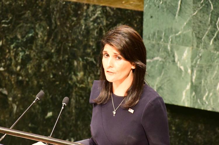 Якщо Радбез ООН не може нічого вдіяти в Сирії, Сполучені Штати зможуть – посол США в ООН