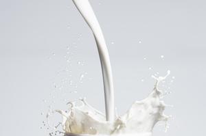 Група компаній «Молочний альянс» збільшила продажі на 26,2% за минулий рік