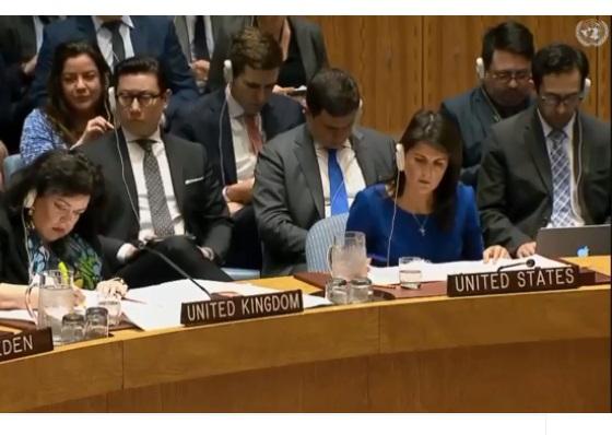 В ООН відбулося екстрене засідання Ради Безпеки щодо Сирії