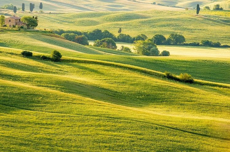Вісім українських «фермерів» зареєстрували 0,5 млн га землі
