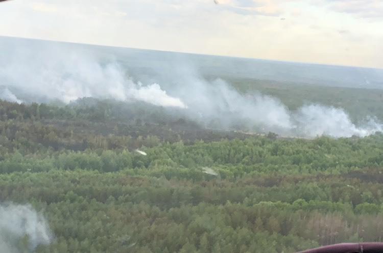 ОНОВЛЕНО: відкритого вогню у Чорнобильському лісі немає