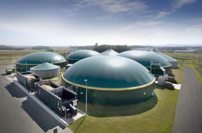 Цукровий завод інвестує в комплекс із виробництва біогазу 290 млн грн