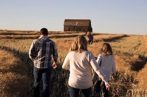 Я б в аграрії пішов: про переваги вищої освіти у галузі сільського господарства