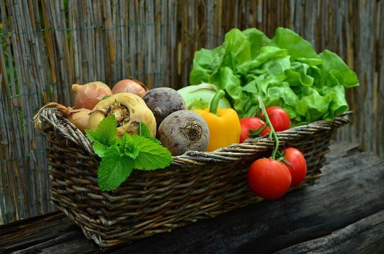 Японська Nichia вирощує «лікувальні» овочі за допомогою LED-світла