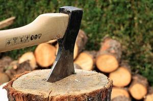 Постукали по дереву: як Рада намагається захистити українські ліси