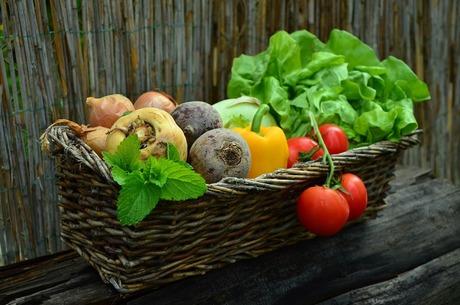 Які можливості в України на світовому аграрному ринку