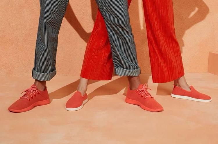 Як заробити $100 млн на кросівках без логотипу: стартап AllBirds підкорює Кремнієву долину