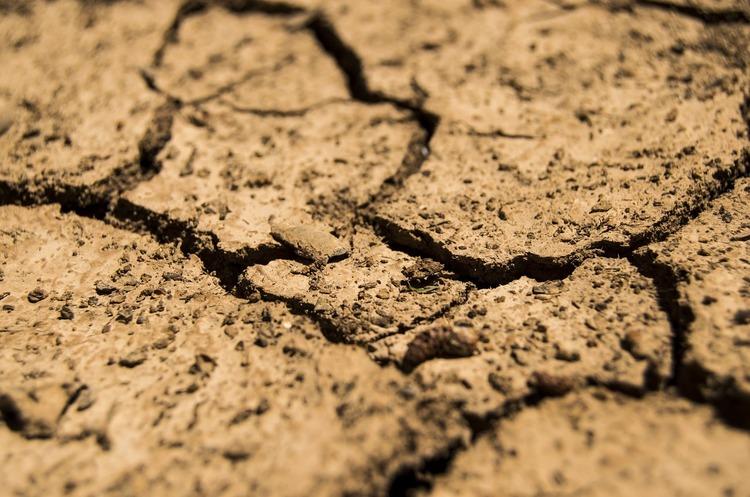 Єврокомісія допоможе сільгоспвиробникам які зазнали збитків через сильну посуху