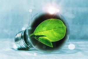 Господдержка с молотка: выгодно ли будет производить альтернативную энергию через 10 лет