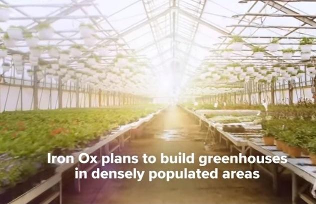 У Каліфорнії створили автоматизовану ферму, на якій урожай вирощують лише роботи