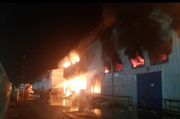 На Одещині горить маслопереробний завод «Дельта Вілмар» (ОНОВЛЕНО)