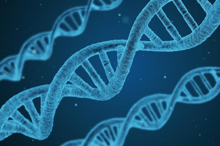 Перші генно-модифіковані діти народилися в Китаї – АР