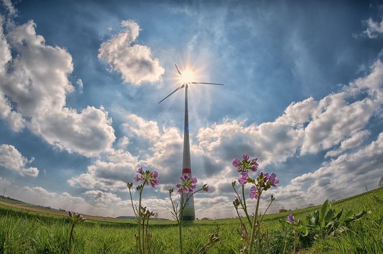 У чому особливості підтримки відновлюваної енергетики в ЄС