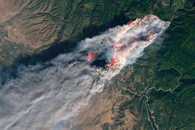 Форрест Трамп: президент США заявив, що не дасть Каліфорнії грошей на боротьбу з пожежами