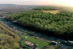 У Парижі хочуть посадити ліс, в 5 разів більший за Централ-Парк у Нью-Йорку