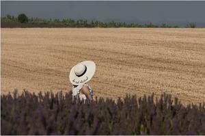 Українські аграрії збільшили експорт до країн ЄС майже на 7% – Мінагро